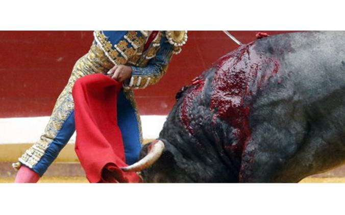 testimonio-corrida-toros-luposan
