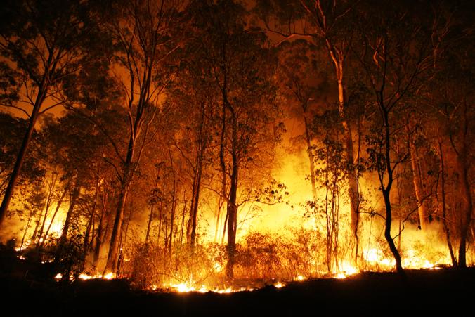 bosques_quemados_espana