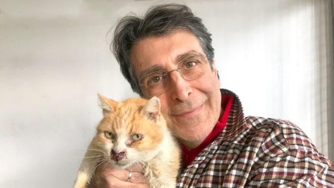 La conexión que se establece entre un humano y gato