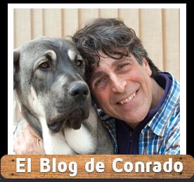 El blog de Conrado